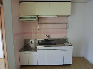 エクセレント古田 / 201号室キッチン