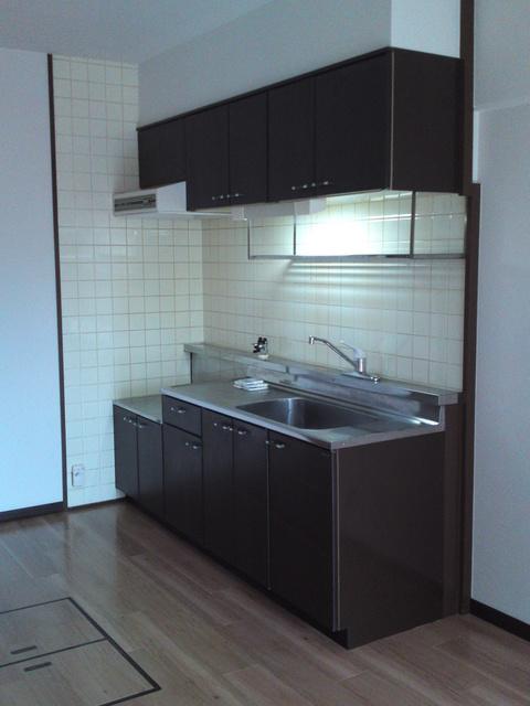 エクセレント田口 / 103号室キッチン