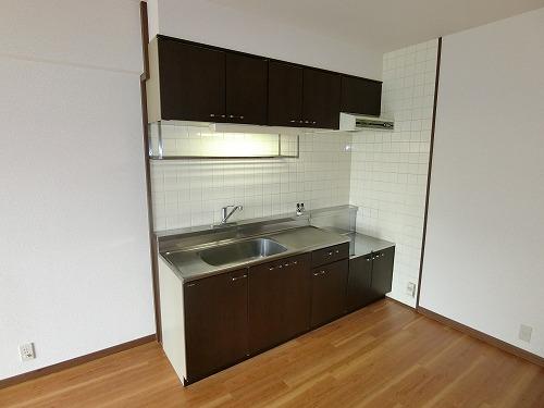 エクセレント田口 / 402号室キッチン