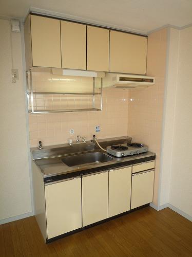 グレイシャス長尾 / 301号室キッチン