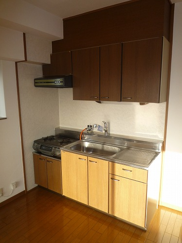 グランベルデ丸善 / 205号室キッチン