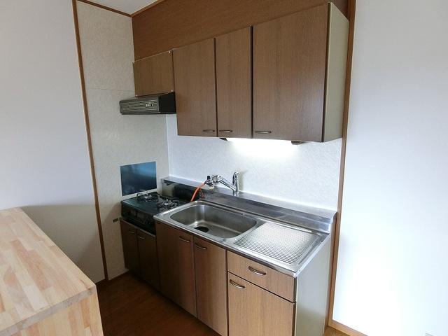 グランベルデ丸善 / 902号室キッチン