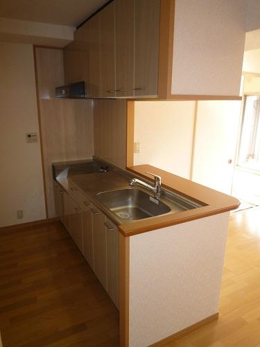 マノワール箱崎 / 402号室キッチン