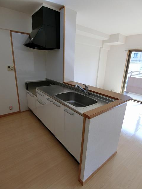 スターマイン / 202号室キッチン