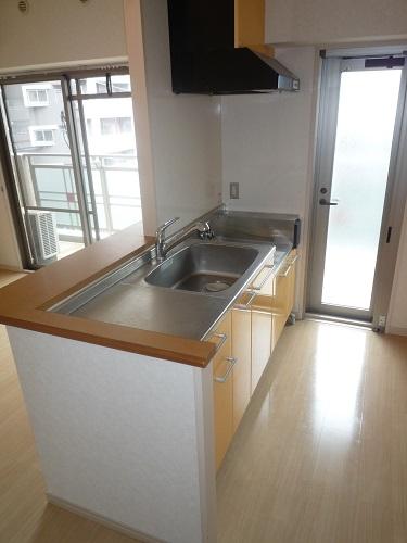 カーム ヴィラ / 303号室キッチン