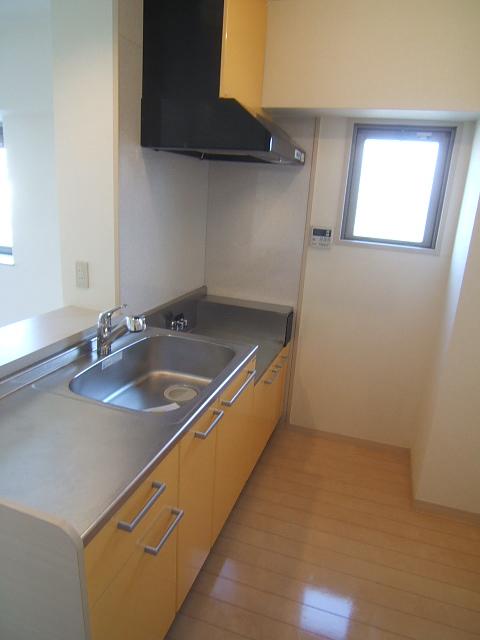 アスティオン中島 / 202号室キッチン