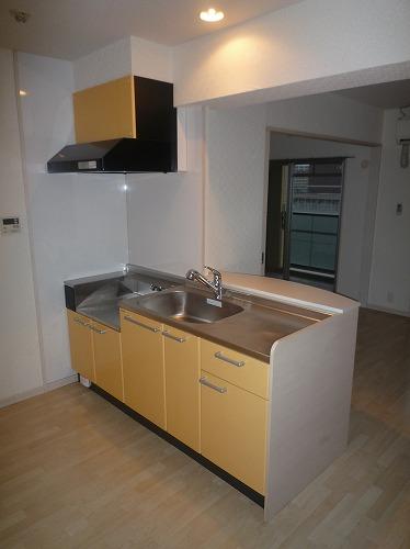 リバーランドⅥ / 205号室キッチン