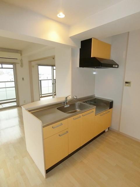 リバーランドⅥ / 301号室キッチン