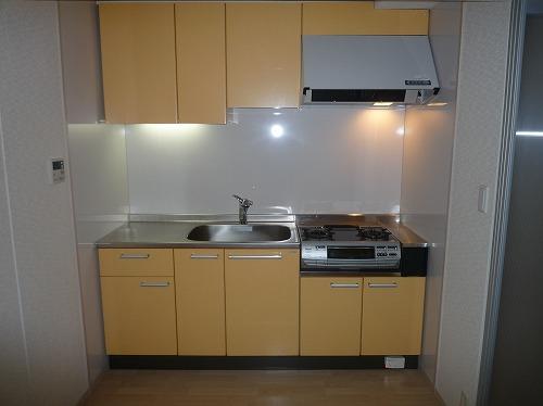 リバーランドⅥ / 302号室キッチン