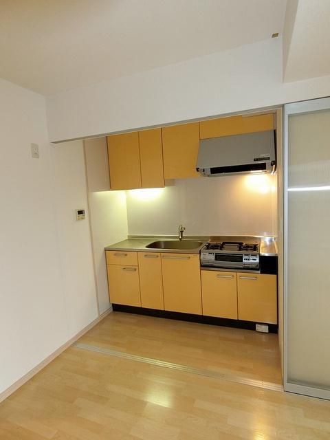 リバーランドⅥ / 502号室キッチン
