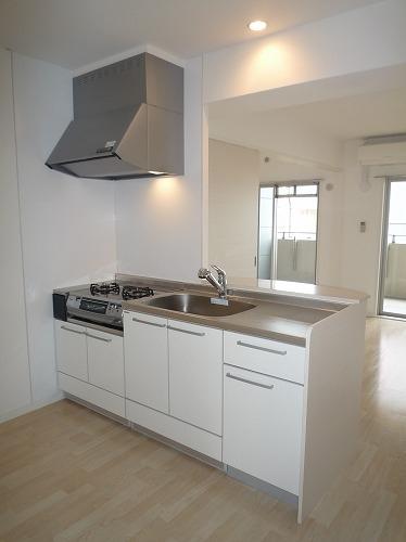 グレイス サンビオ / 303号室キッチン