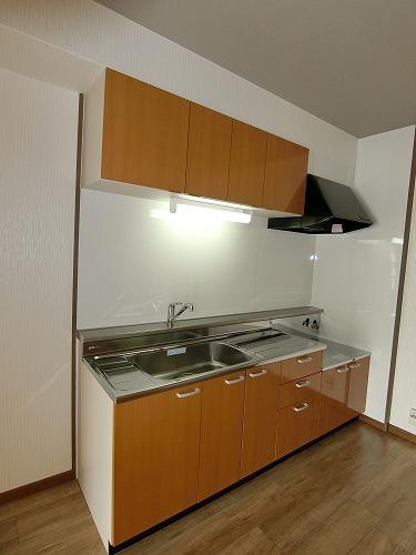 エクセルE・F / 403号室キッチン