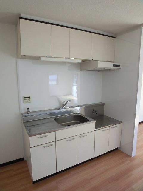 アイビーハイツ / 101号室キッチン