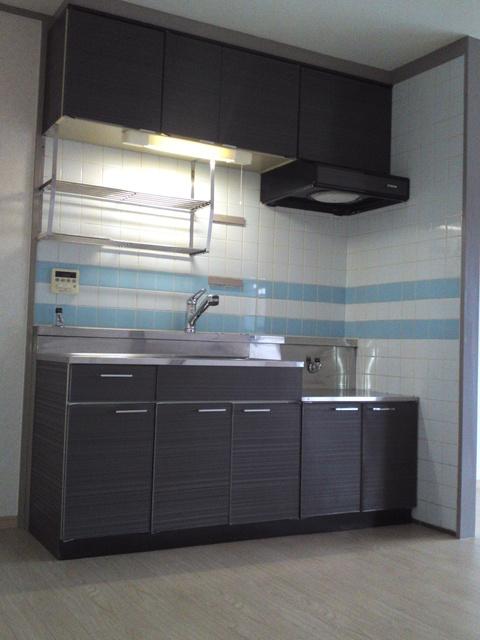 アイビーハイツ / 303号室キッチン