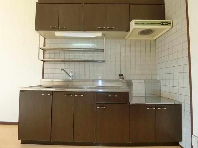 ハイ・アルブル迎田 / 401号室キッチン