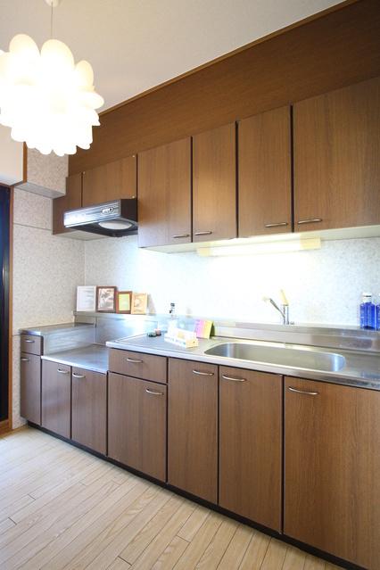 サンヒルズTAKEDAⅡ / 302号室キッチン