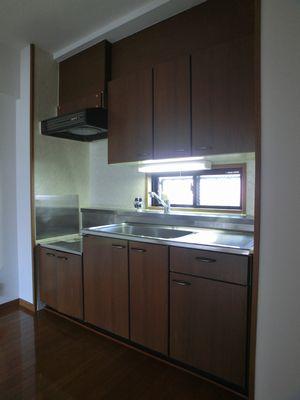 グランコート / 203号室キッチン