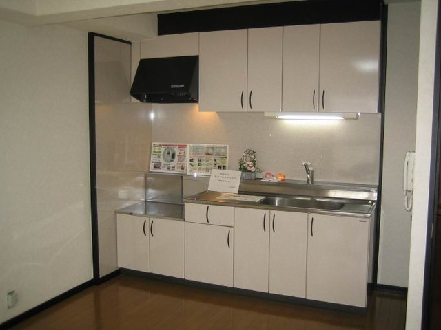 アイビーハイツⅡ / 303号室キッチン