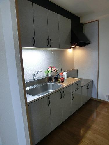 カンフォーロ藤木 / 502号室キッチン