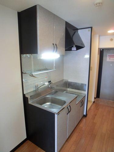 スクレーパー東 / 201号室キッチン