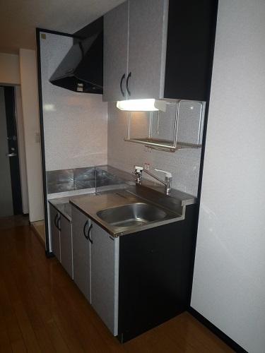 スクレーパー東 / 301号室キッチン