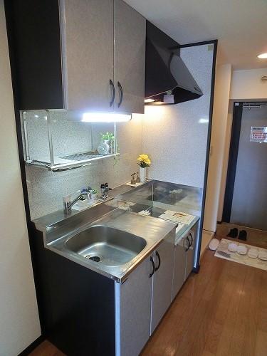 スクレーパー東 / 501号室キッチン