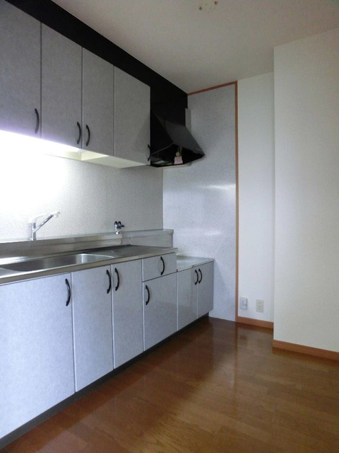 ピオーネテラス空港南 / 203号室キッチン