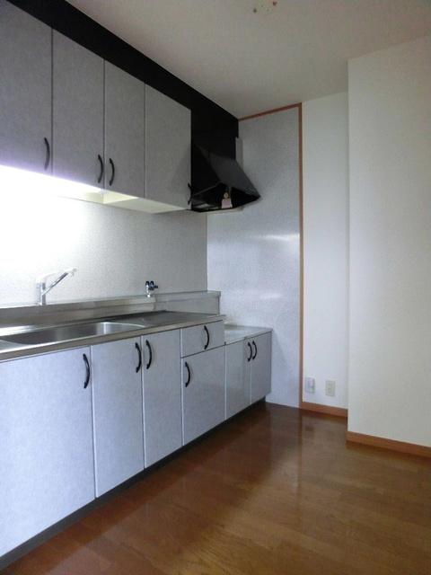 ピオーネテラス空港南 / 501号室キッチン