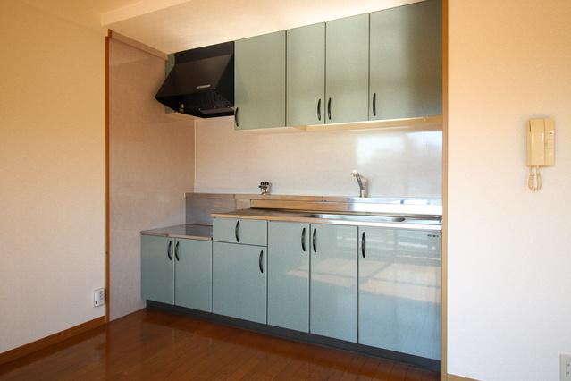 ピオーネテラス空港南 / 502号室キッチン