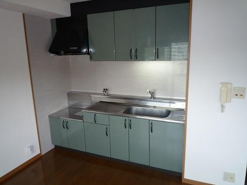 ピオーネテラス空港南 / 702号室キッチン