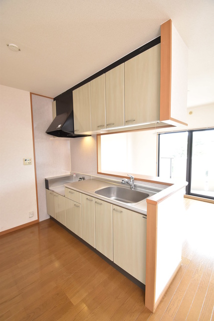 ルミエール21 / 401号室キッチン