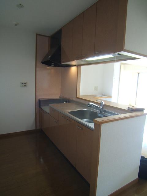 ジュノーパレス / 201号室キッチン