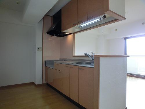 ジュノーパレス / 402号室キッチン