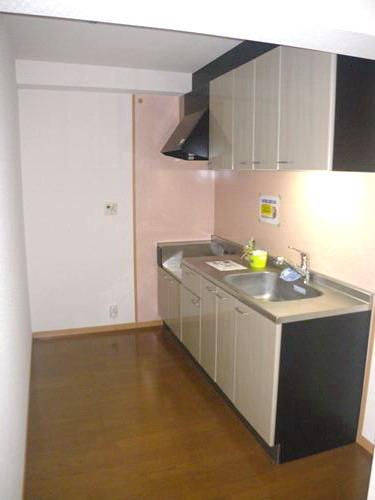 シングレート・ヒルズ / 202号室キッチン