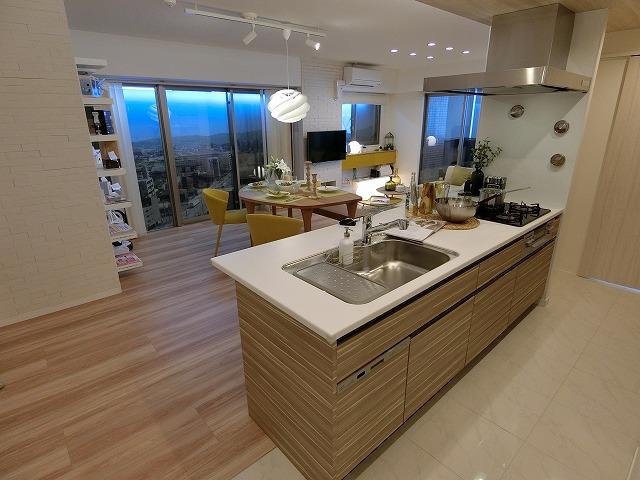 ネオグレイス吉塚 / 1301号室キッチン