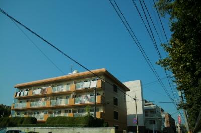 筑紫ビル / 402号室
