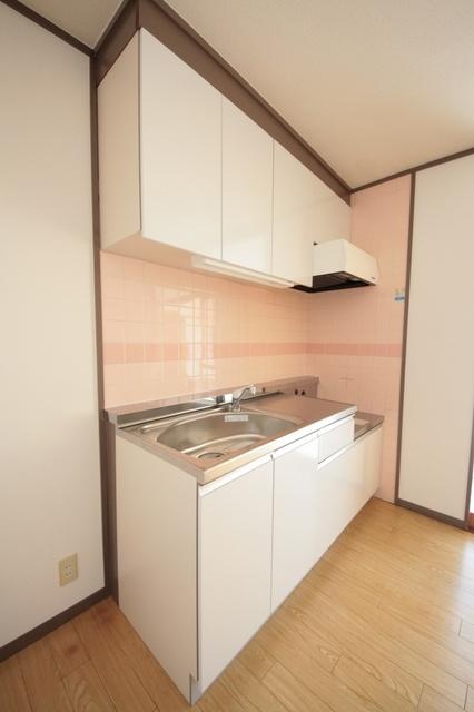 エクセレント古田 / 405号室キッチン