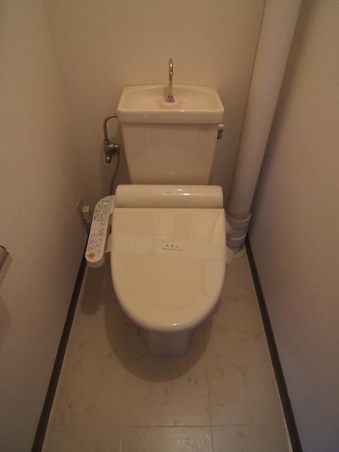 Amenity丸善 / 501号室トイレ