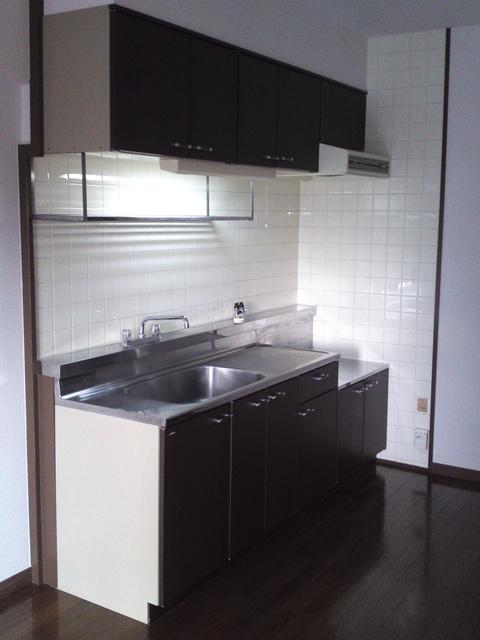 エクセレント田口 / 302号室キッチン