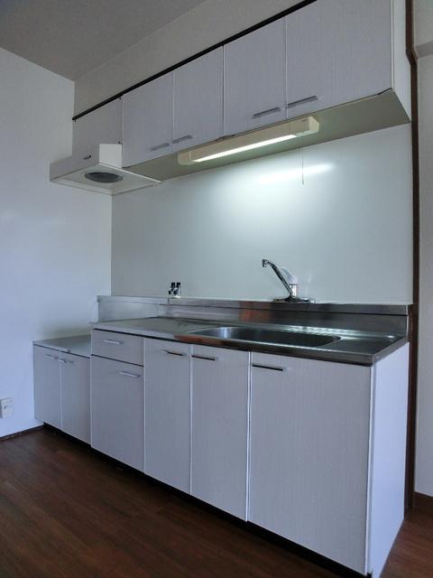 エクセレント田口 / 403号室キッチン