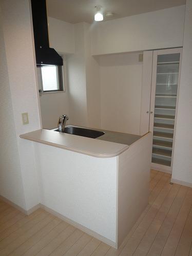 アスティオン中島 / 301号室キッチン