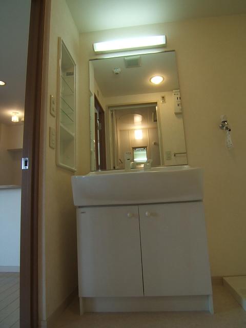 アスティオン中島 / 501号室洗面所