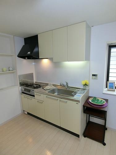 ラ・ネージュ / 103号室キッチン