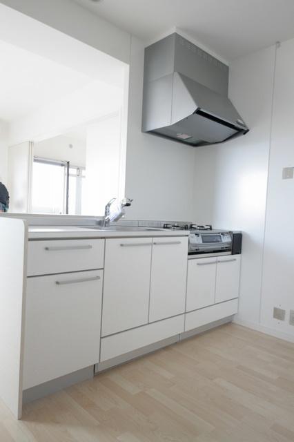 グレイス サンビオ / 503号室キッチン