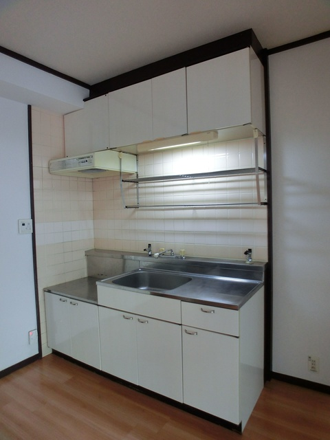 レジデンス牛房(ペット可) / 203号室キッチン