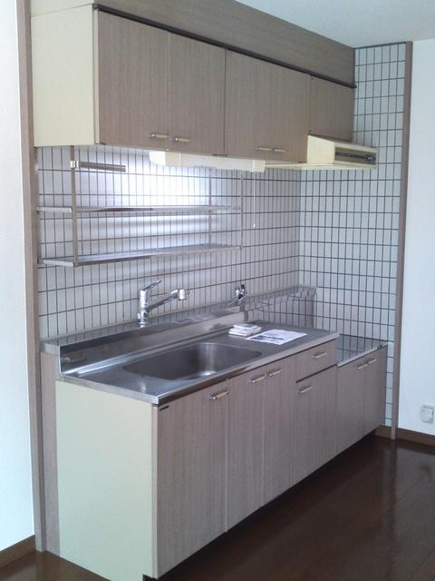 コムフォート・シティ / 203号室キッチン
