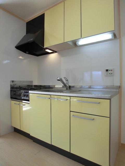 アイビーハイツ / 105号室キッチン