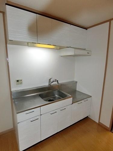 アイビーハイツ / 203号室キッチン