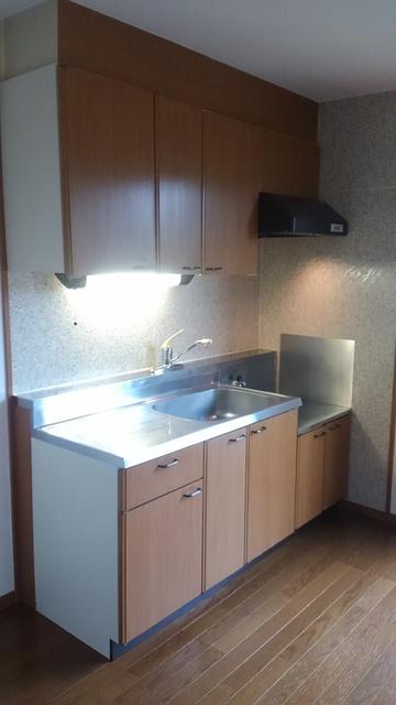 ティアラ 安川 / 101号室キッチン