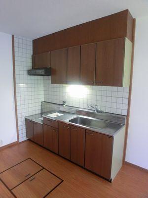 エントピア空港東 / 303号室キッチン